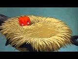Pluto Pluto's Fledgling