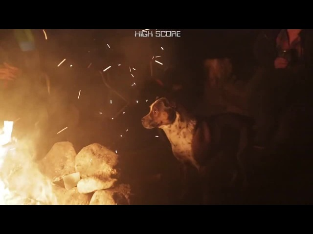 Hilarious Dog Plays Pac-Man With Campfire Embers