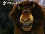 Madagascar foosa attacks