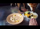 Tiki the fox does not like fruits (Day 222)