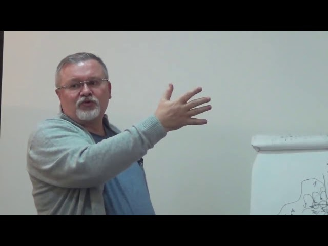 Владимир Полежаев Презентация бизнеса