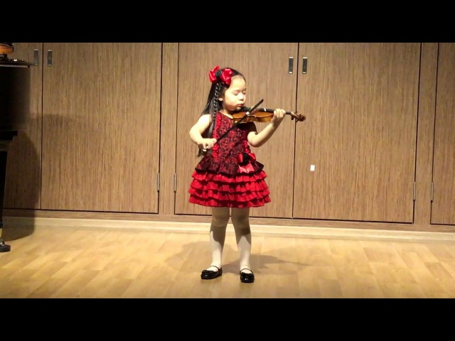 Haydn violin concerto in G major 1st mvt.