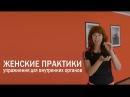Упражнения для внутренних органов женщины Укрепления мышц тазового дна Женские практики