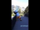 Кунг-фу панда в теме😀