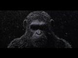 Война планеты обезьян 2017 трейлер