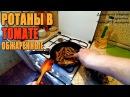 Офигенные обжаренные бычки в томате из РОТАНА! Рецепт - Что делать с ротаном!