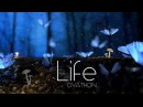 DYATHON Life Emotional Piano Music