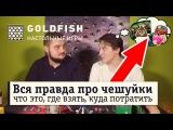 Как получать максимум выгоды от игры MTG в клубе? Magic: The Gathering bonus Goldfish