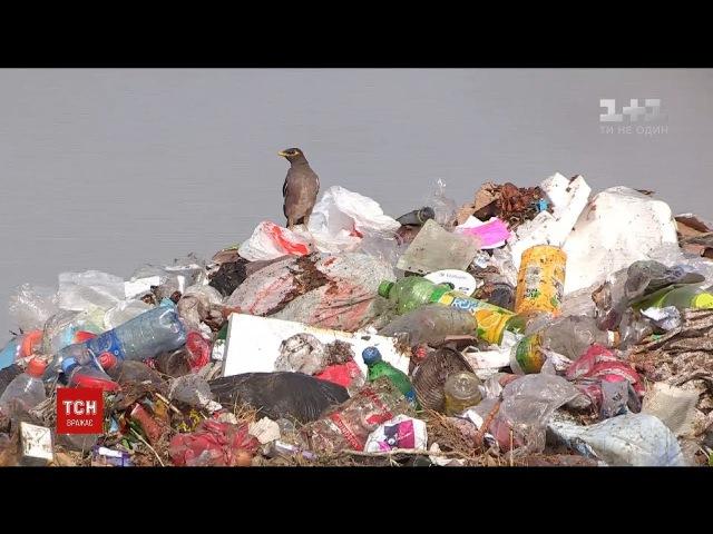 У світі вигадали спосіб перетворення міських смітників на зелені зони