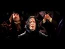Гарри Поттер и философский камень. Снейп против Гермионы