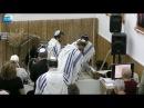 «ВАЙЕРА» | «Наследие для наших потомков» — В.ВЕРЕНЧИК. ЕМО МАИМ ЗОРМИМ (ИЗРАИЛЬ)