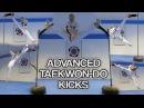Taekwondo Kicking Sampler | Advanced Kicks Flip Kicks | GNT