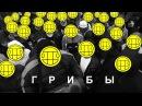 Блокада.пародия на Грибы - Тает лёд