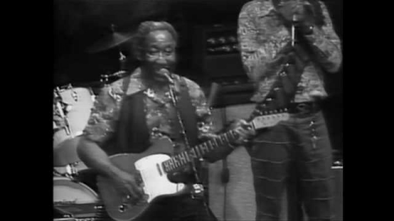 Muddy Waters - She's Nineteen Years Old - ChicagoFest 1981