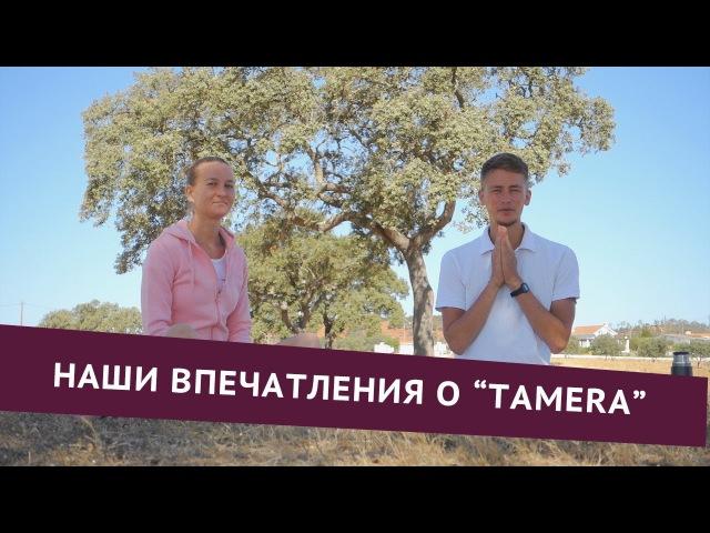 Наши впечатления об экопоселение Tamera в Португалии