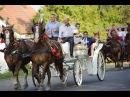Закарпатське ексклюзивне весілля з гуртом Голоси Боржави