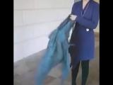 Как правильно носить шарфики платочки ~Умная мама~