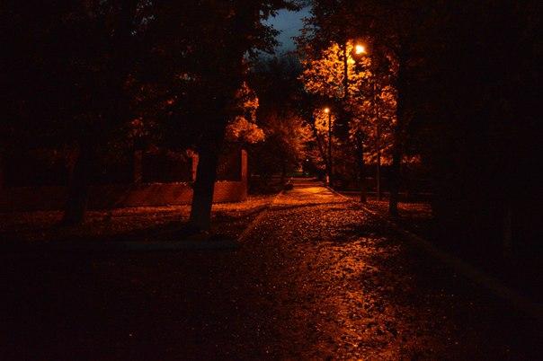 Родные края   Локация: Саратовская область, г. Балашов Автор: [id38485