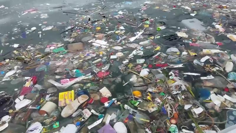 В Тихом Океане нашли НОВЫЙ МАТЕРИК