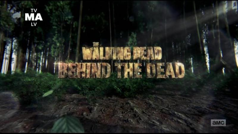 The.Walking.Dead.S08E00.400p.SunshineStudio