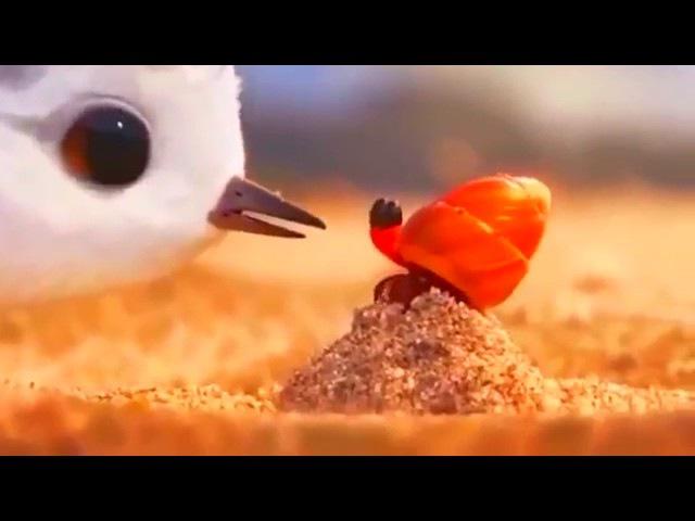 Мультик Песочник the piper о силе приспособления. лучший мультфильм 2016