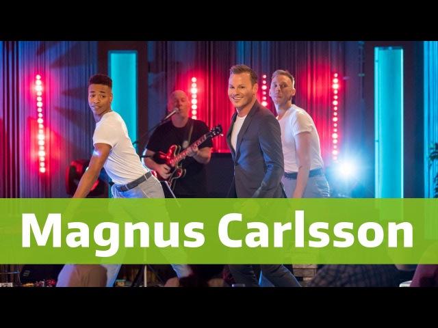 Magnus Carlsson - Sommarnatt - BingoLotto 186 2017