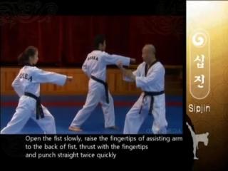 5 - Grand Master Kyu Hyung Lee - WTF Poomsae Sipjin
