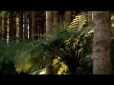 2 - Walking with Dinosaurs - Time of the Titans