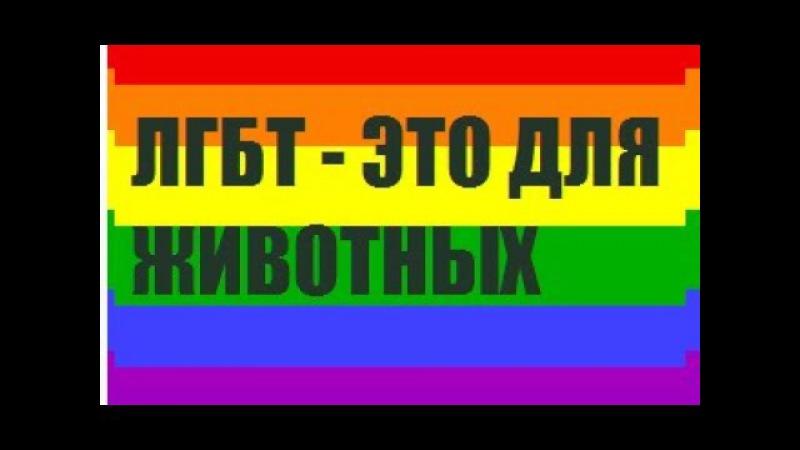 Самое тупое ЛГБТ видео в сети [DAHON]