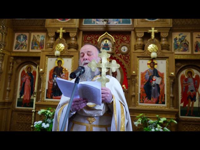 Слово в неделю Всех Святых - слово начальника скита схиигумена Серафима (Покровского)