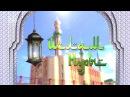 Ислам Нуры 17 11 17