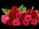 ШИКАРНОЕ поздравление с Днём рождения женщине! БУКЕТ ИЗ АЛЫХ РОЗ !!