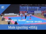 World Taekwondo Championship Pyongyang 2017 Male Sparring Final +85Kg