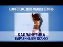 Комплекс для мышц спины  Калланетика  Выравниваем осанку