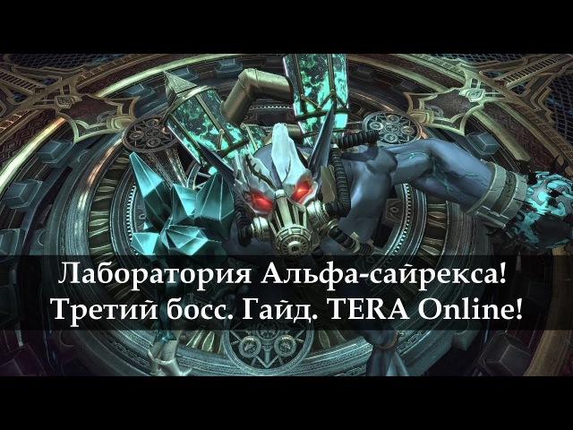 Лаборатория Альфа-сайрекса. Третий босс. Гайд. TERA Online