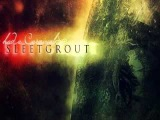 Sleetgrout - Let's Talk About My Life