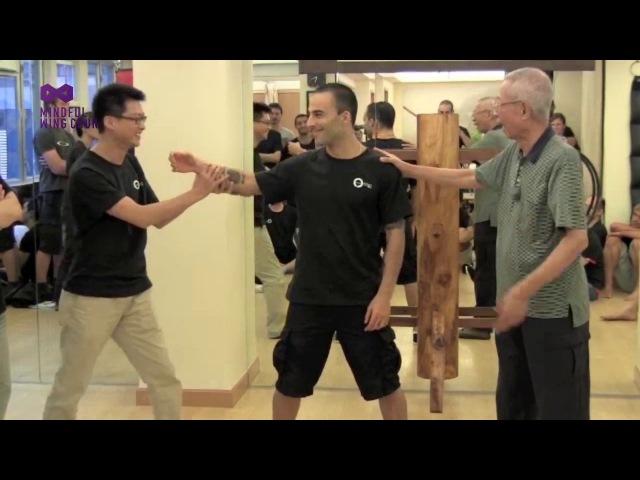 Wing Chun's CHI / Nim Lik - Chu Shong Tin