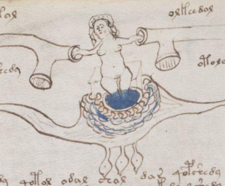 Рукопись Войнича – древняя книга славян