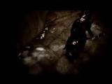 the GazettE - Distress and Coma (2009)