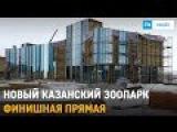Строительство зоопарка Река Замбези в Казани