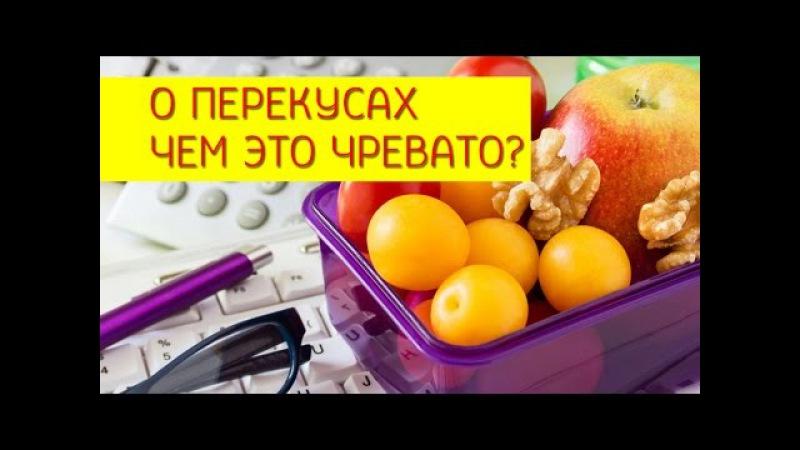 Перекусы Как правильно питаться и можно ли прибегать к перекусам Галина Гросс