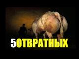 Денис Борисов. Подполье 222 (Пять отвратительных вещей о кочках и бодибилдинге)