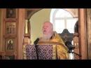 Протоиерей Димитрий Смирнов:Мусульмане ближе к Христу.