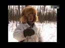 Охота на Волков в Якутии. Волчий промысел!