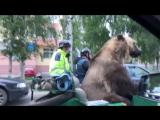 В Архангельске байкеры прокатили живого медведя по центральным улицам города !!!! /здесь пр Ломоносова-ул Урицкого/