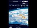 BBC Планета Земля Planet Earth 2006 Эпизод 9 Мелководные моря