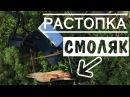 Растопка - Смоляк / Fatwood