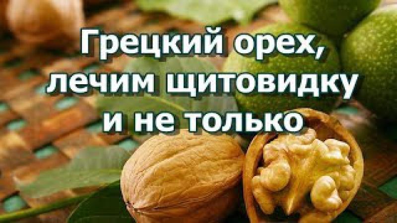 Грецкий орех, лечение Народные знания - Лечим щитовидку и не только