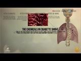 Последствия отказа от курения