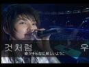 이준기 Lee Joon Gi★『사랑을 몰라 愛を知らない』字幕★イ・ジュンギ